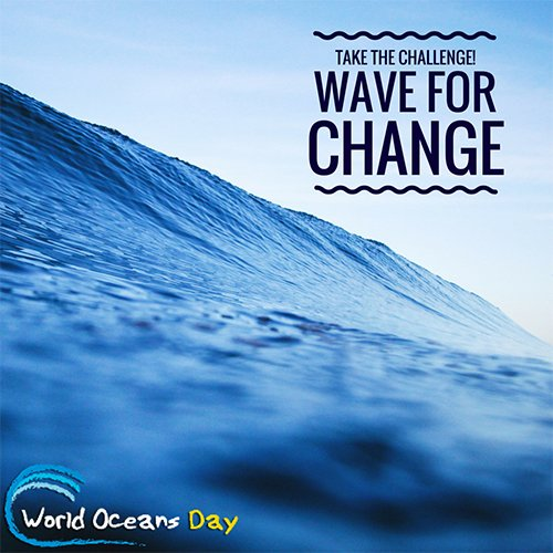 waveforchangeweb