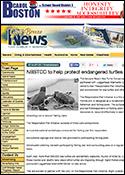 News_hatchlings