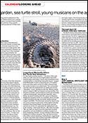 Loggerhead-Marinelife-Offers-Sea-Turtle-Nest-Adoptions