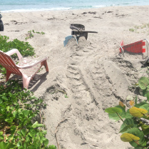cm-nest-between-beach-chairs2