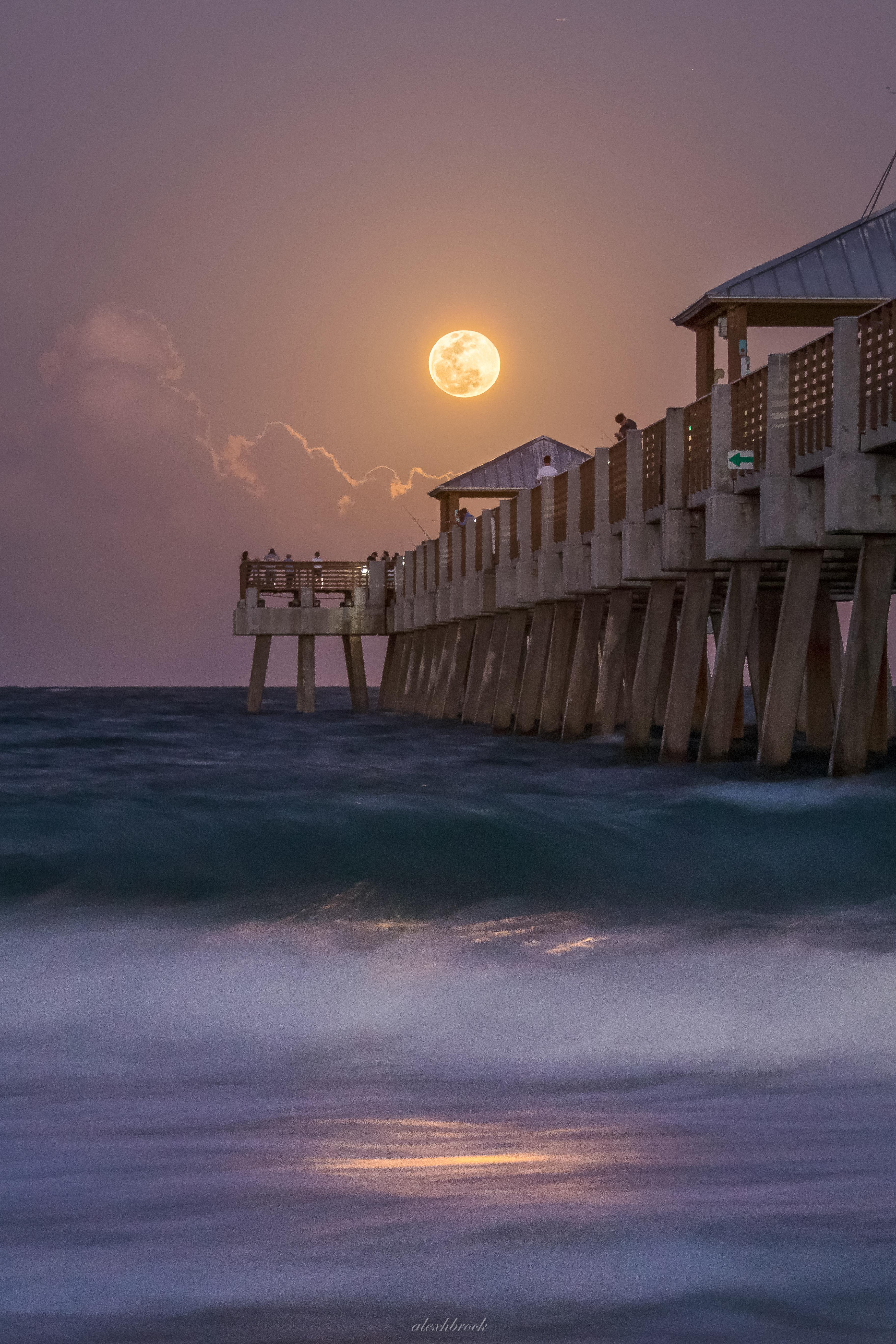 Juno Beach Pier Photo Contest Winner, Alex Brock.