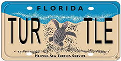 TurtleLicensePlateweb