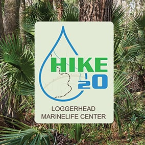 Hike_header_sm