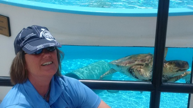 After falling in love with sea turtles, Nancy regularly volunteers at the Center.