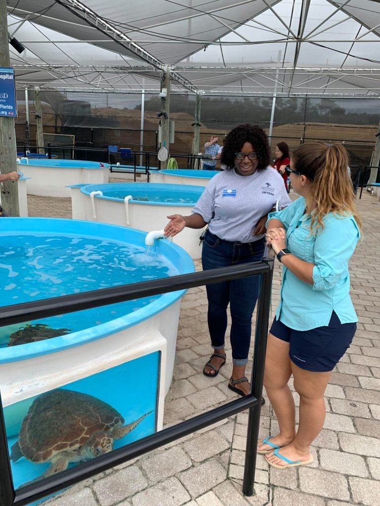 In light of COVID, Loggerhead Marinelife Center will provide virtual educational programming to engage supporters.