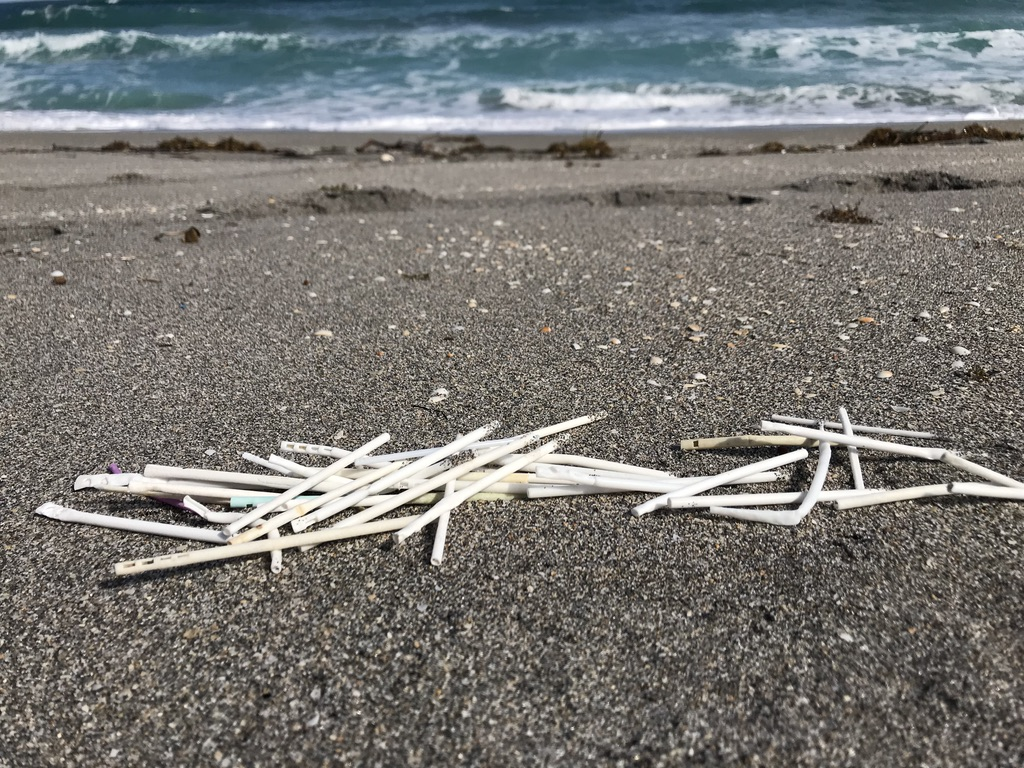 This World Ocean Month, take action to reduce the lollipop marine debris in our oceans.