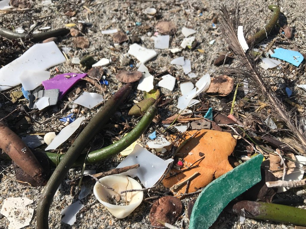 All data collected during Loggerhead Marinelife Center's self-guided beach cleanup program will be used as part of the National Oceanic and Atmospheric Administrations' Marine Debris Program.