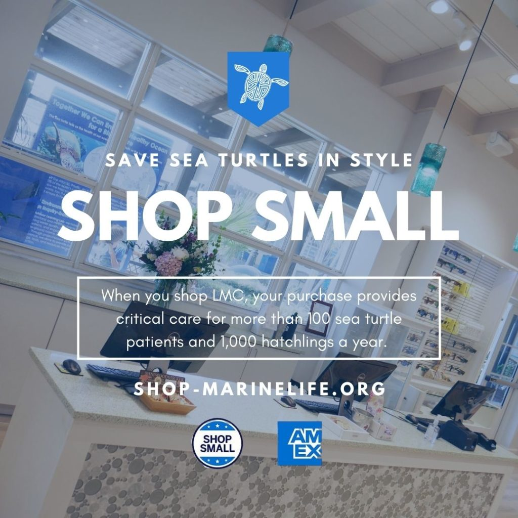 During the holiday season, there are several ways and days to shop for a cause and make your purchases have an impact.
